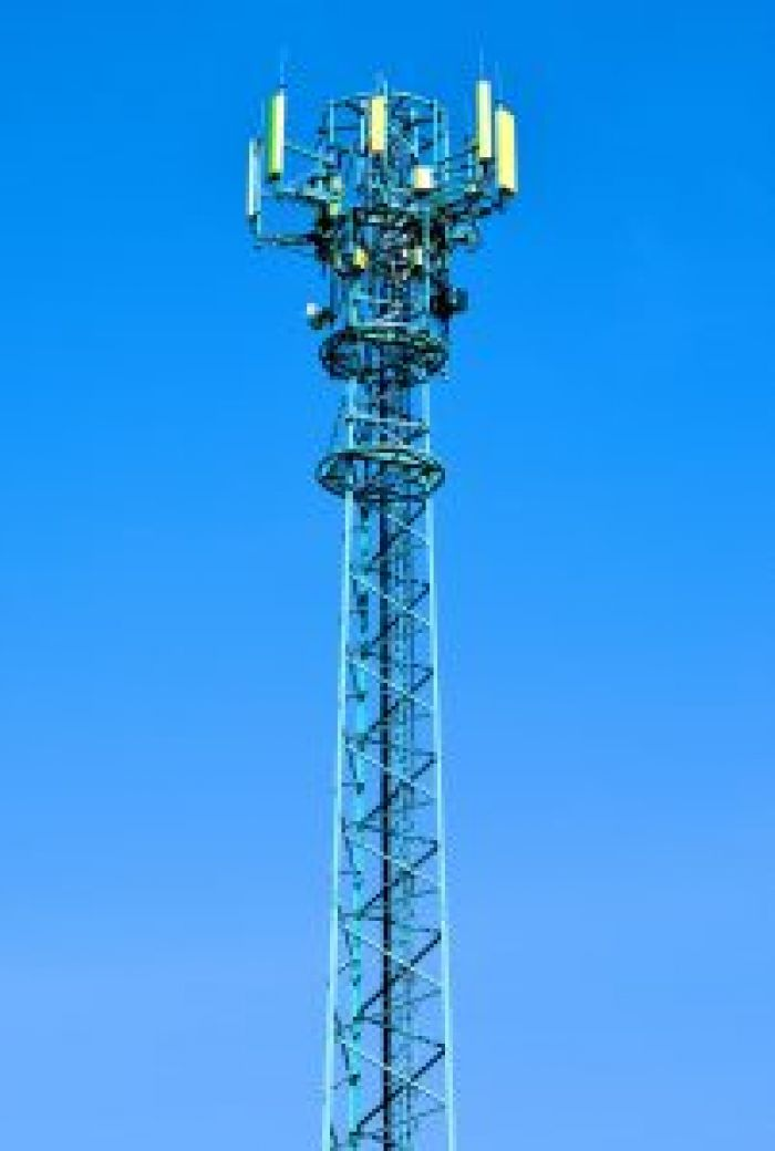 Cell Towers Damage Your Blood
